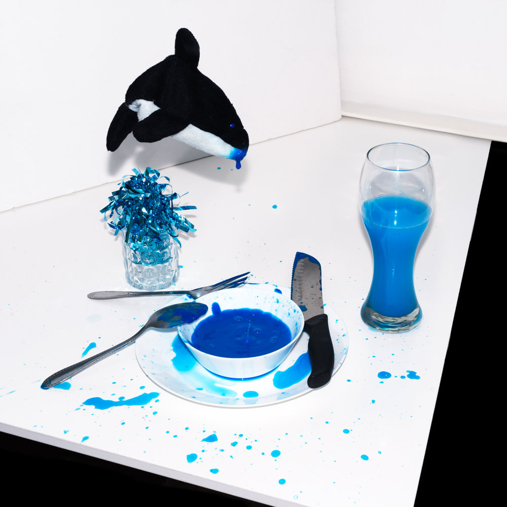 Tilikum's blue filled world