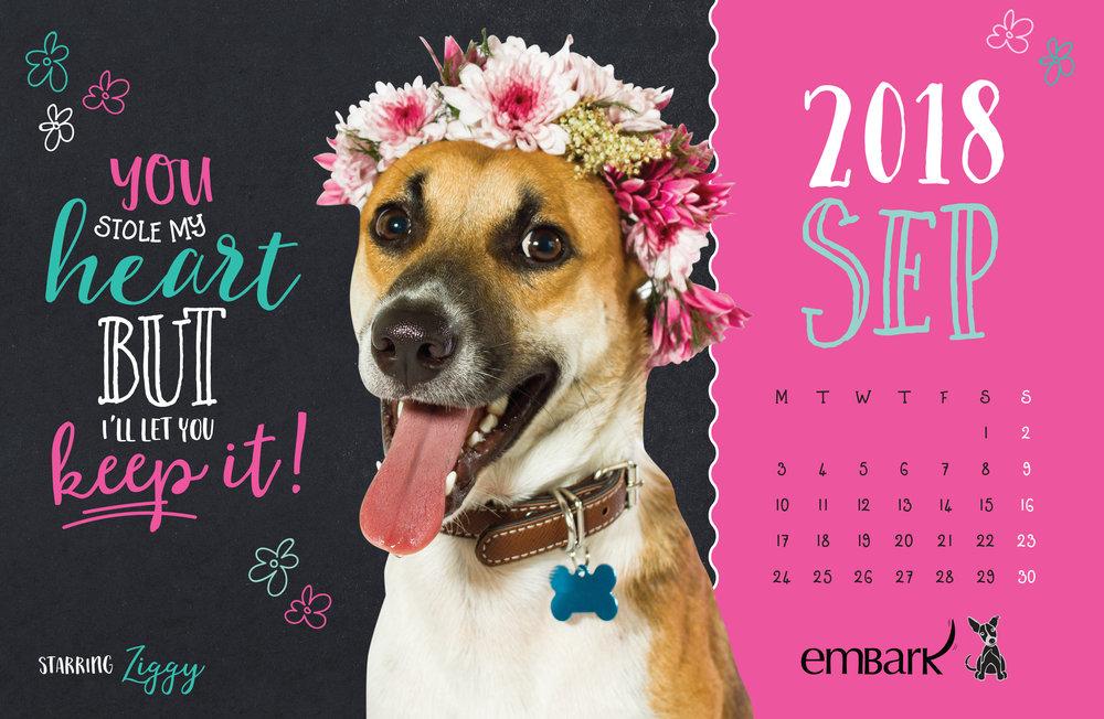 Embark-Calendar-2018-19.jpg
