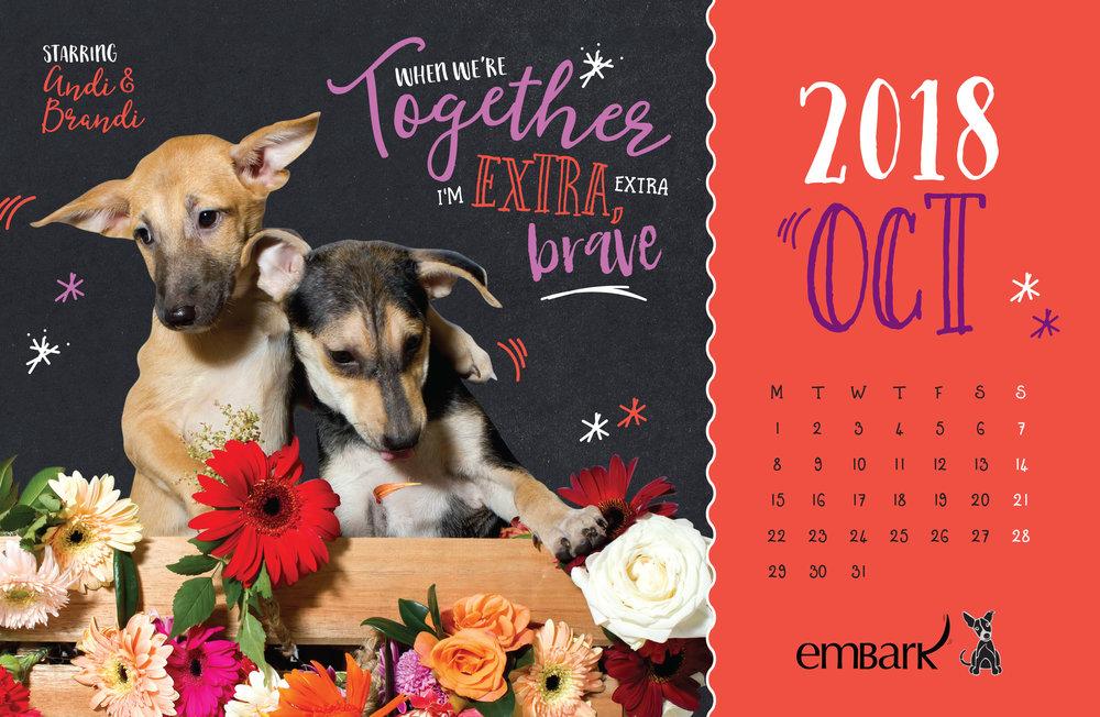 Embark-Calendar-2018-21.jpg