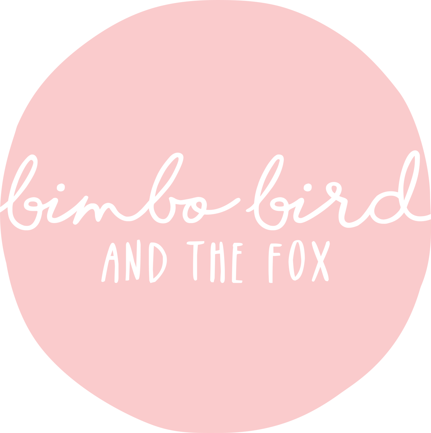 bimbo bird & the fox