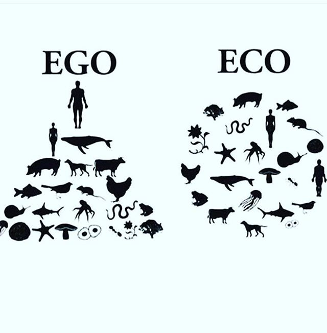 New year's resolutions via @we_saveplanetearth 🌍 #begood #newyear #ecoego #change