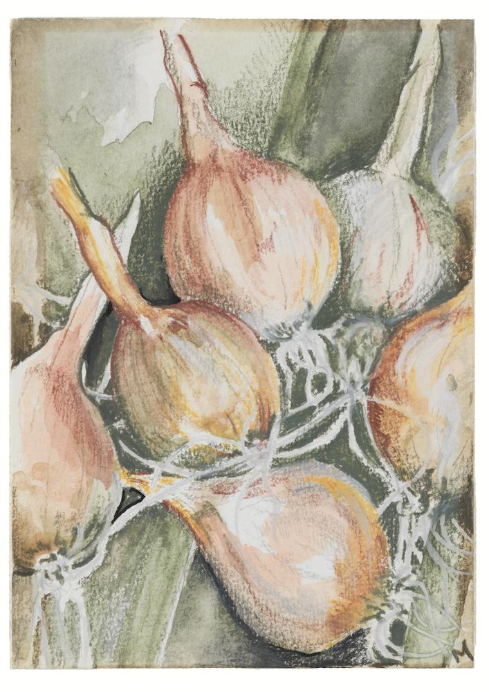 Onions website size jpeg.jpeg