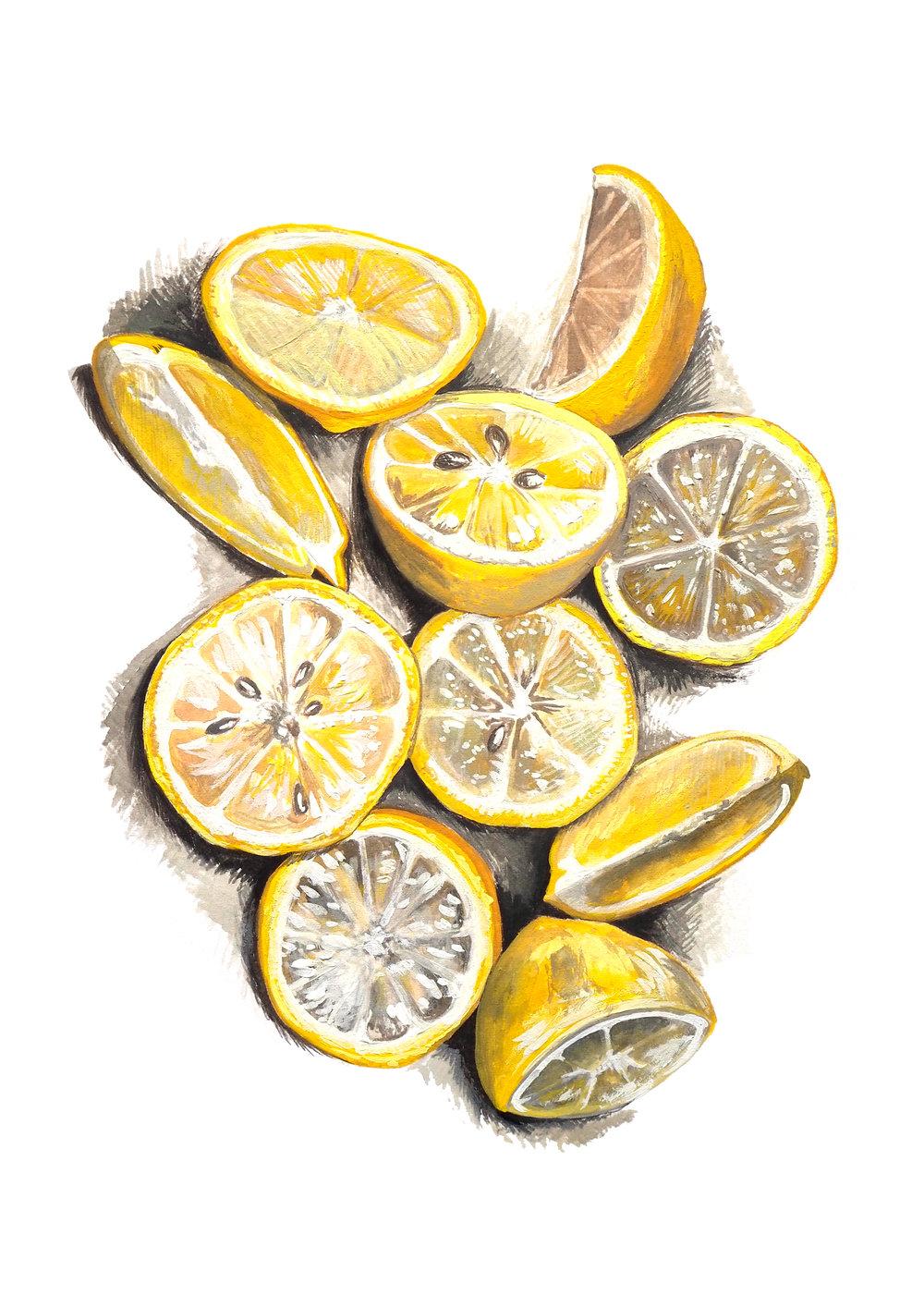 Lemons A4 1000.jpeg