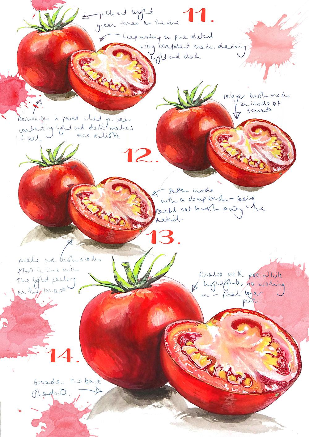 Tomatoes 3.jpg