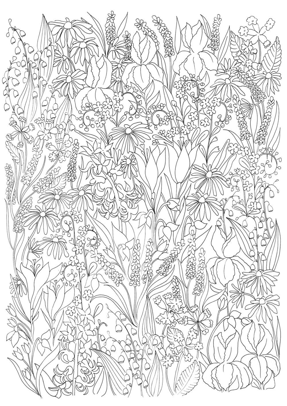 Spring flowers black and white .jpg