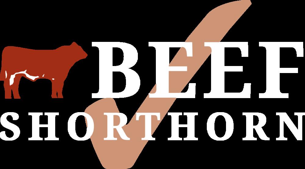 BSH Master Logo 2019 (white).png