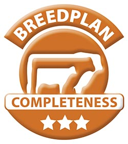 Breedplan-3Star-Bronze.jpg