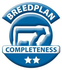 Breedplan-2Star-blue.jpg