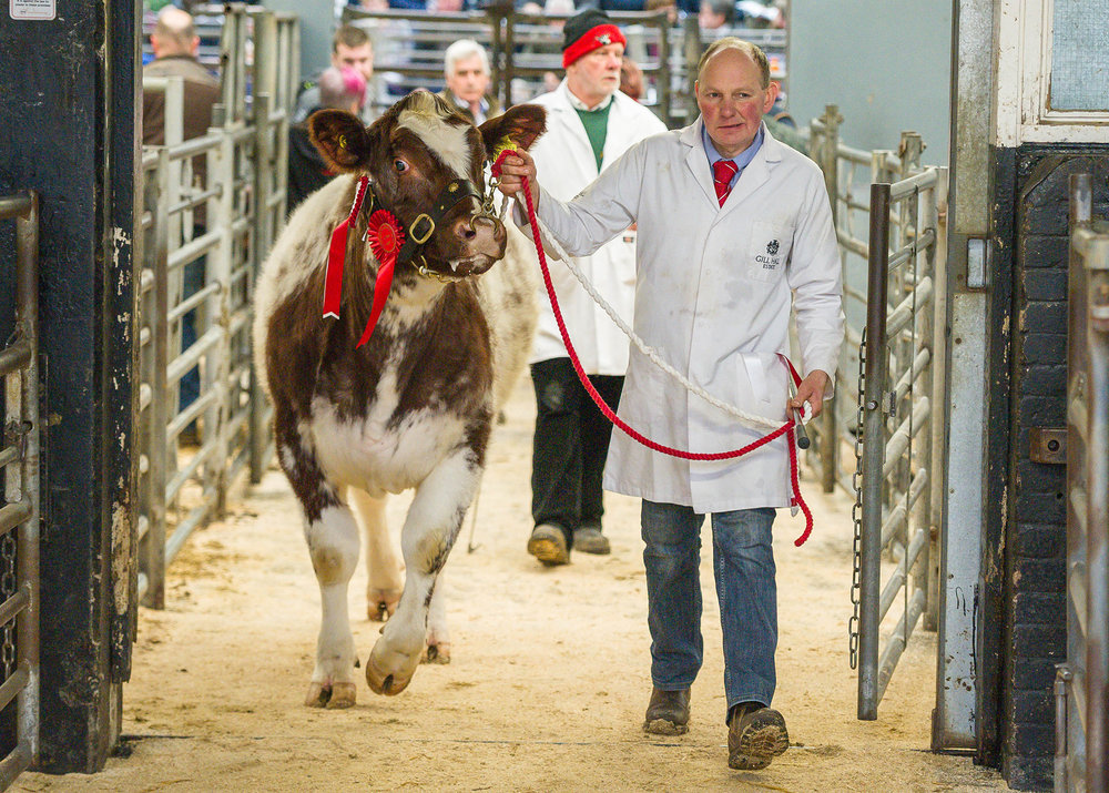 Carlisle Early Spring Show and Sale