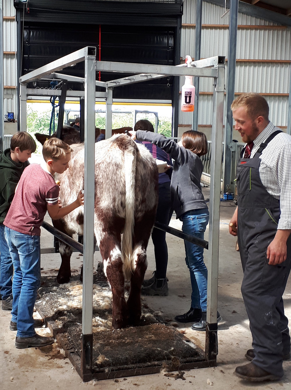 Eamon McCarty supervises the clipping workshop
