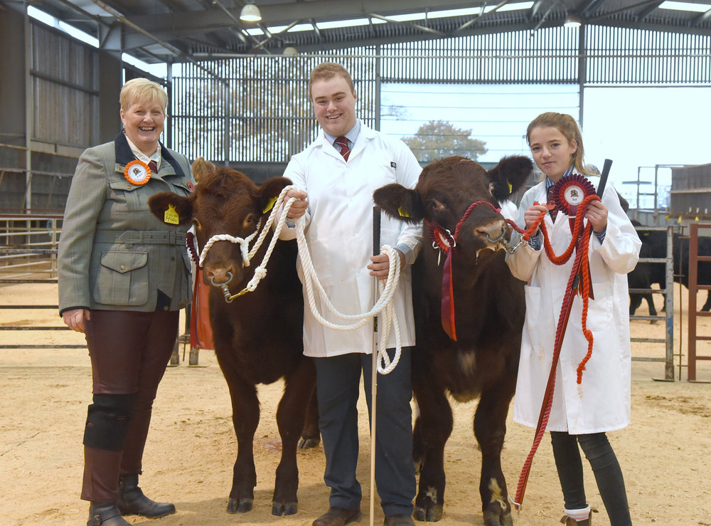 Northern Club 'Rising Stars' Calf Show 2018