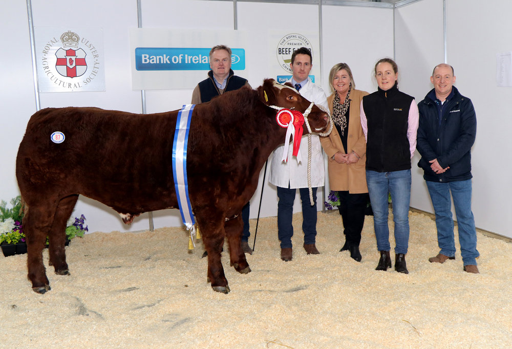 Royal Ulster Premier Beef and Lamb Championships 2018