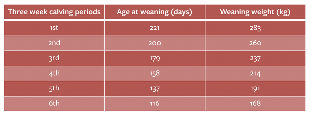 Table 2: The effect of calving date on weaning weight [Source: QMS 2015]