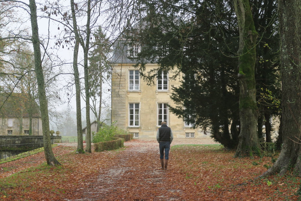 The allée leading to the Chateau.
