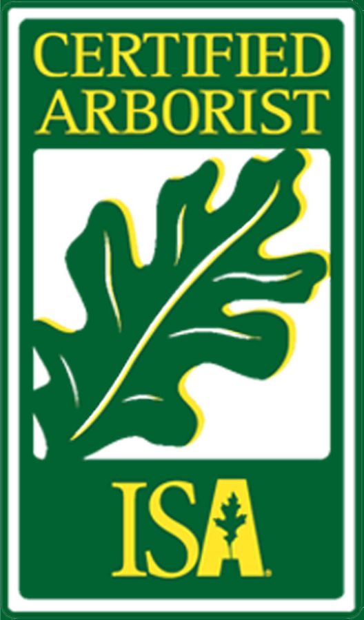Grizzlybear Arborcare ISA certified Arborist Tree Services