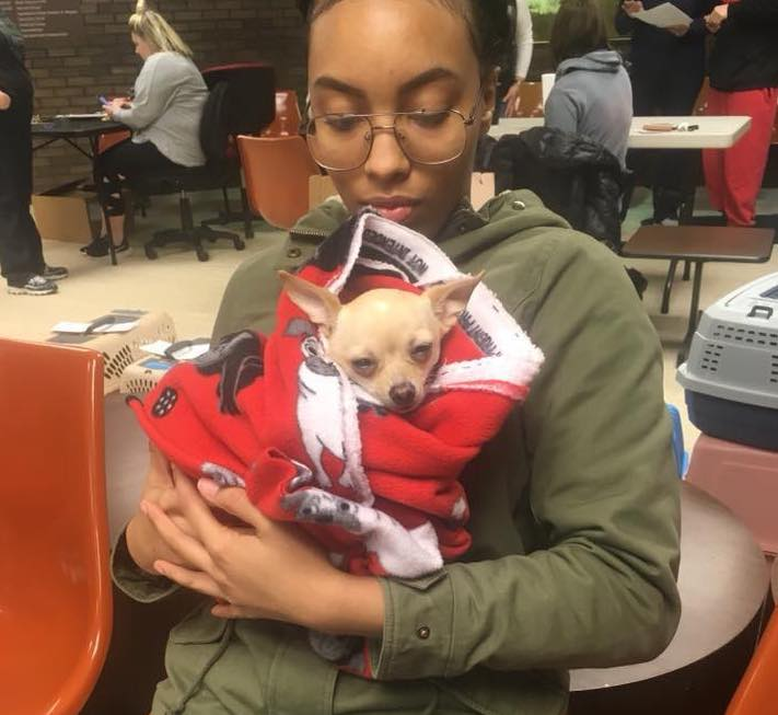 save-ohio-pets-2018-Feb-3.jpg