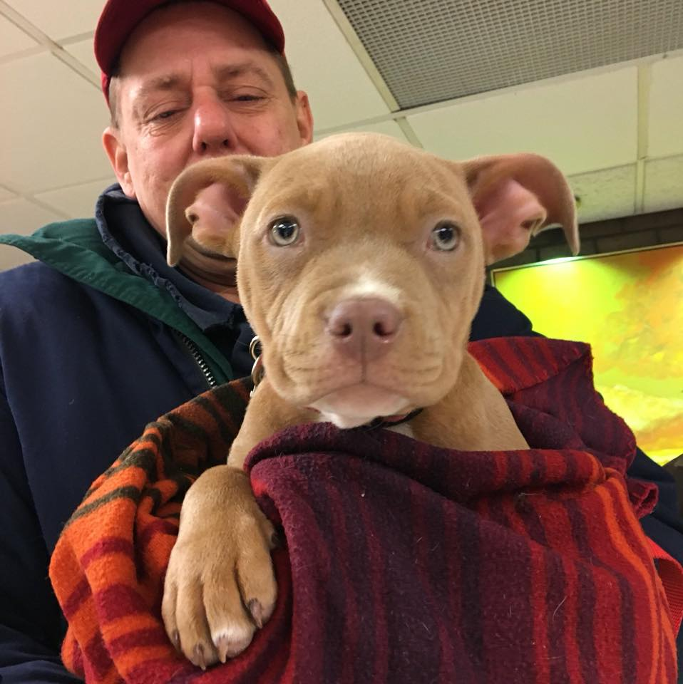 save-ohio-pets-2018-March-2.jpg