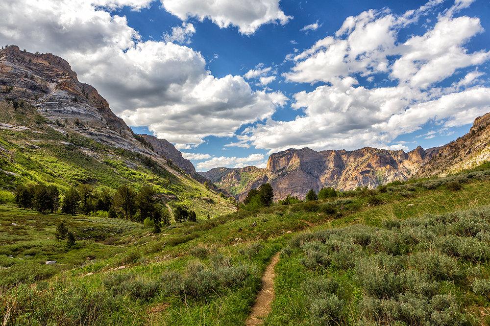 Trail Back.jpg