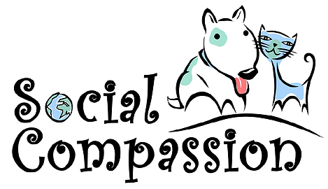 Social Compassion, a sister organization to Social Compassion in Legislation, strives to build a better future for, and to raise more compassionate, caring humans through humane education and civic involvement. We strive to help all beings obtain greater respect, rights, health and creating conditions to flourish and grow as individuals and as a community.  Learn More --->