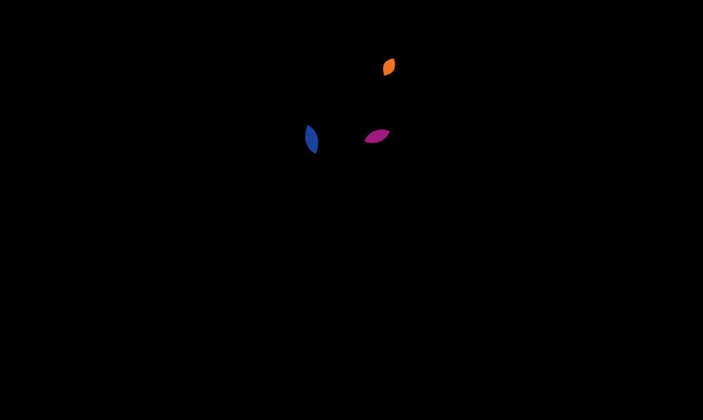 NOEL PINEDA-logo-color HDpng.png