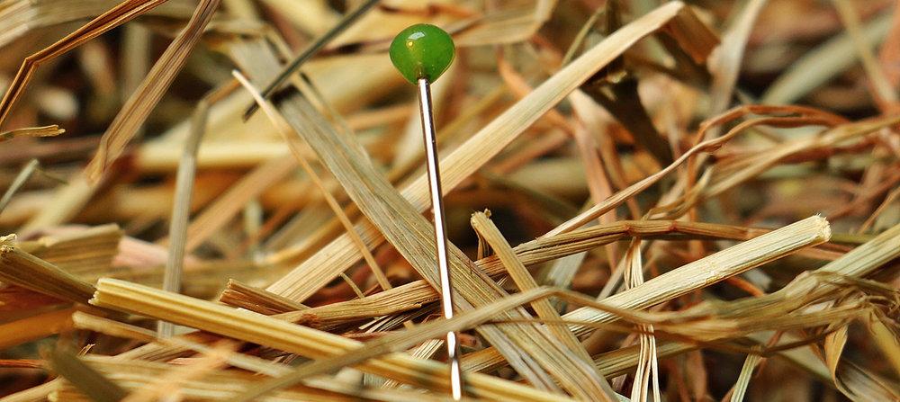 MaxPixel.freegreatpicture.com-Love-Haystack-Pin-Needle-Needle-In-A-Haystack-1752846.jpg