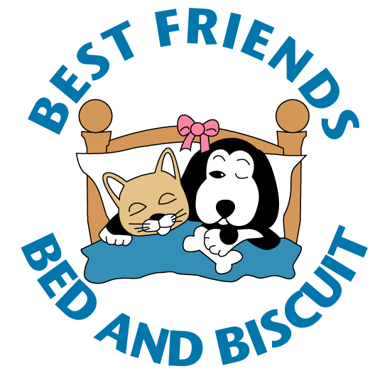 Best Friends Bed and Biscuit Pet Resort Dog Cat Boarding Kennel | Greensboro NC | Doggie Daycare | Swimming Pool