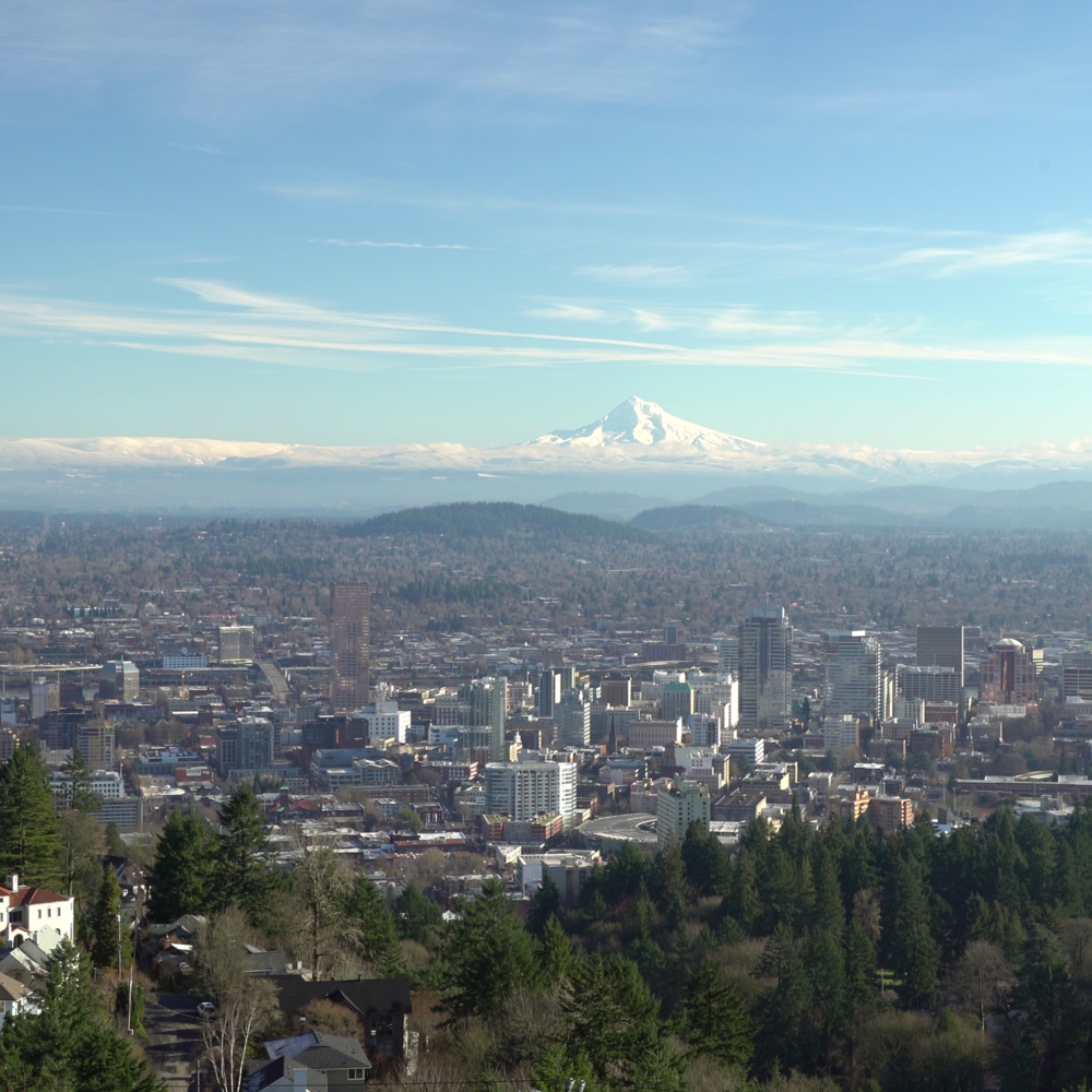 View of Mt Hood.png