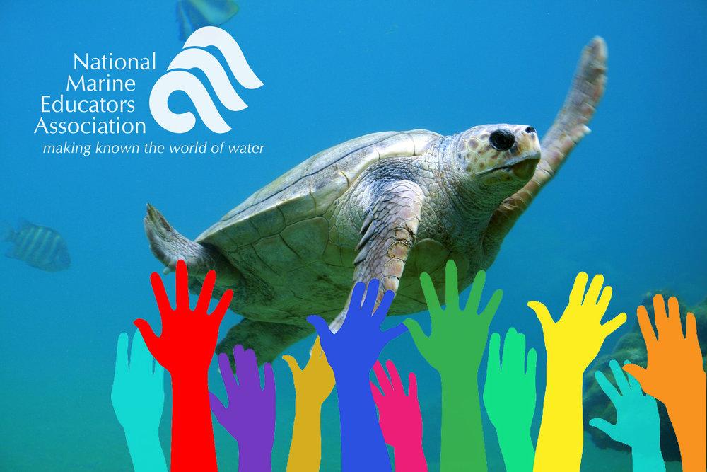 NMEA News — National Marine Educators Association