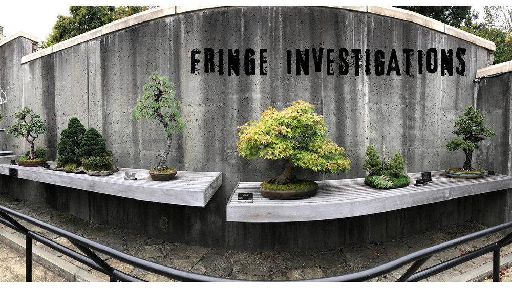 FIep005-bonsai.jpg