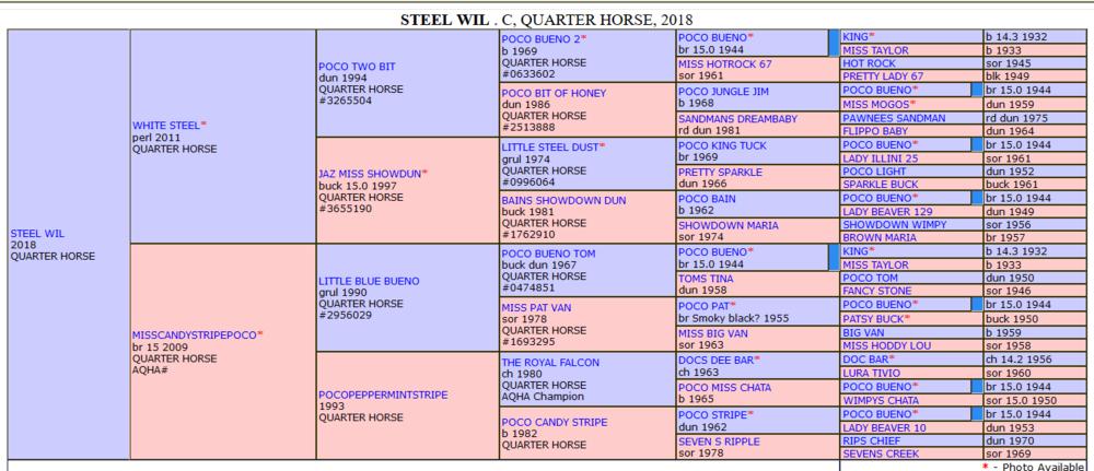 Steel Wil extende pedigree.png