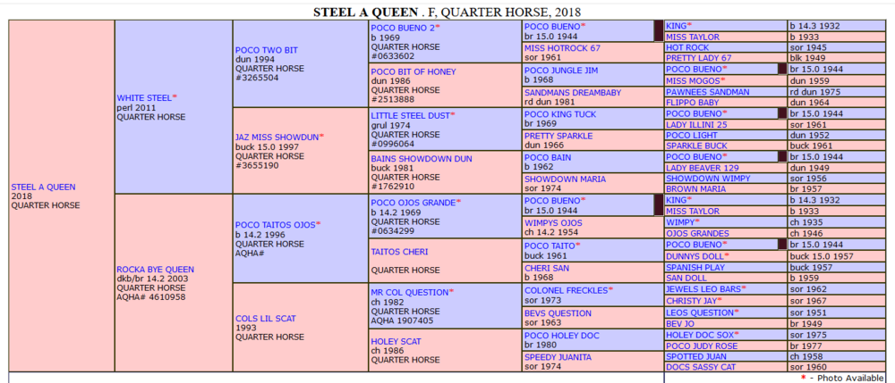 Steel a Queen extended pedigree.png