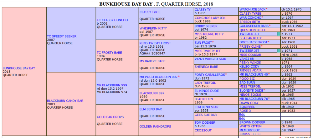 Bunkhouse Bay Bay extended pedigree.png