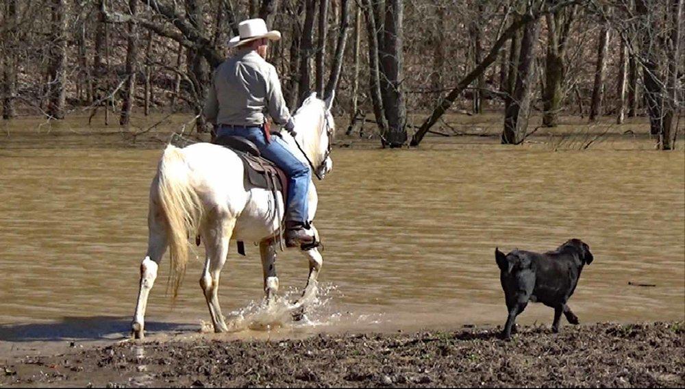 Estorian in the flood waters.Movie_SnapshotA.jpg