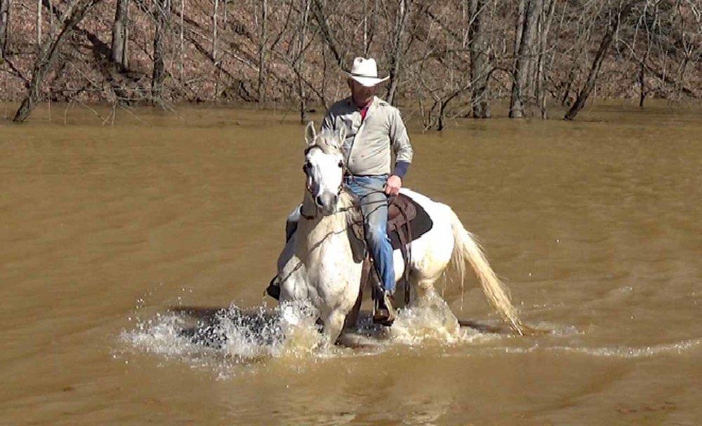 Estorian in the flood waters (4).Movie_SnapshotA.jpg