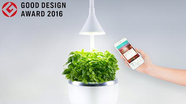 good+design.jpeg