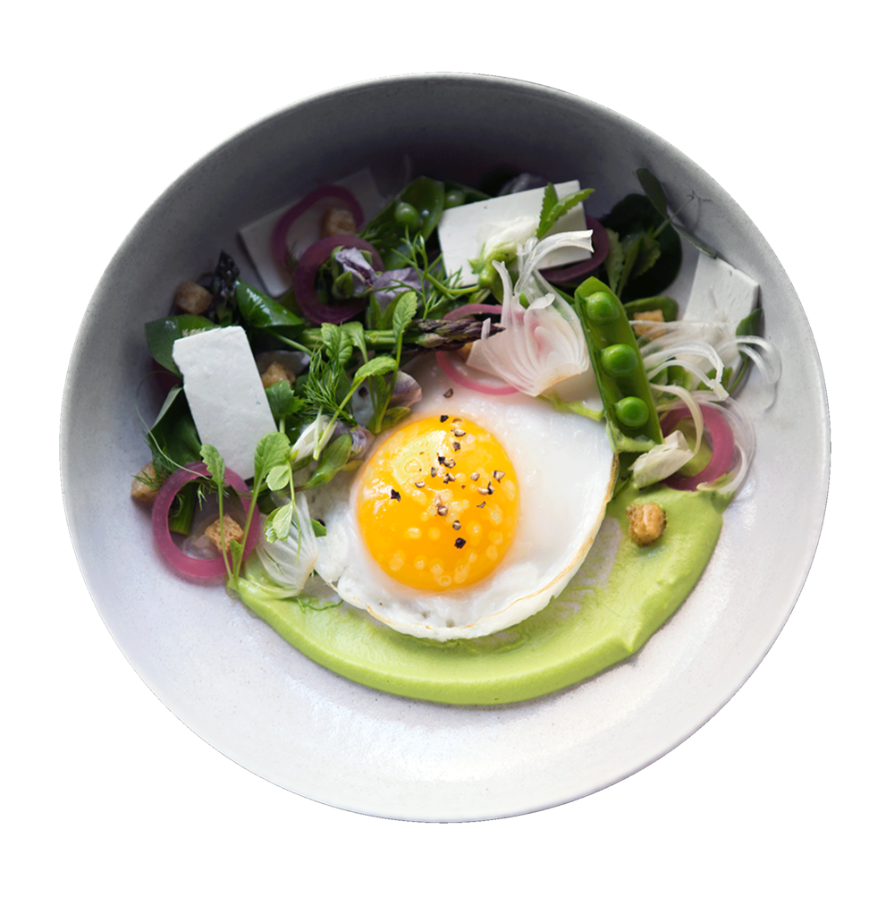 egg_plate_light.png