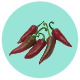 Matchbox Pepper