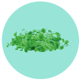 Micro Green Blend