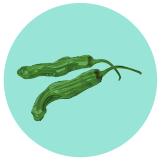 Shishito Peppers