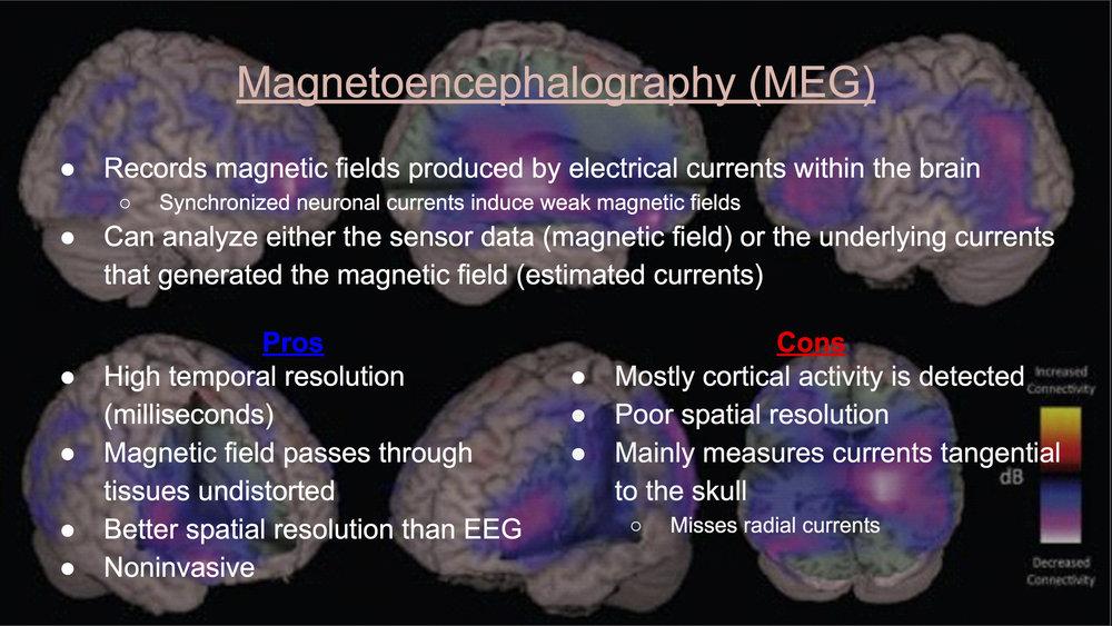 Functional NeuroImaging Techniques (MEG).jpg