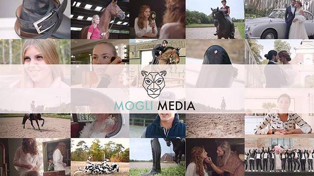 ✨ Het eerste half jaar van @moglimedia is voorbijgeflitst waarin wij mooie projecten hebben afgerond en herinneringen vastgelegd! Benieuwd wat wij voor jou kunnen betekenen? Neem dan snel een kijkje op onze website of neem contact met ons op! 🌐 www.moglimedia.nl   📧 info@moglimedia.nl