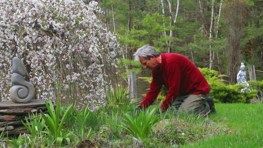 negotiating-with-nature-stefan-van-norden-gardening.png
