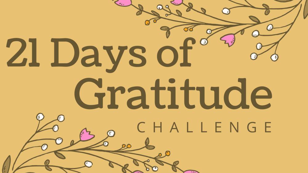 21 days of gratitude.png