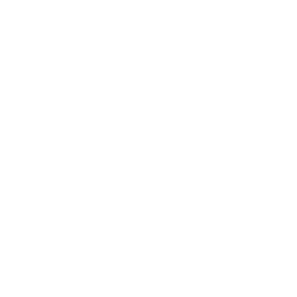 <strong>White House News Photographer Association</strong>  1st place, Documentary