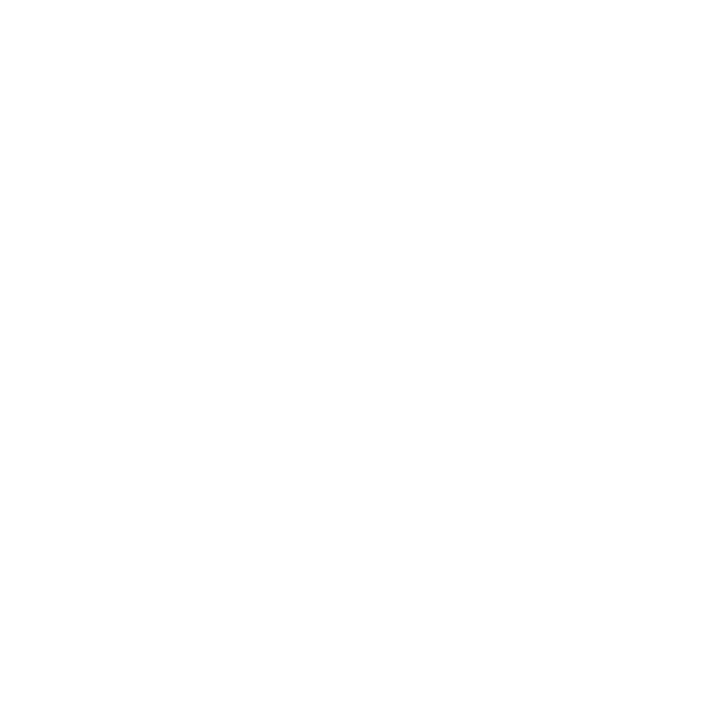 <strong>Minneapolis St Paul Film Festival</strong>Official Selection | TransMilitary