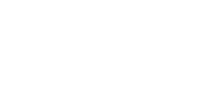 Nelsie Yang for Ward 6 City Council