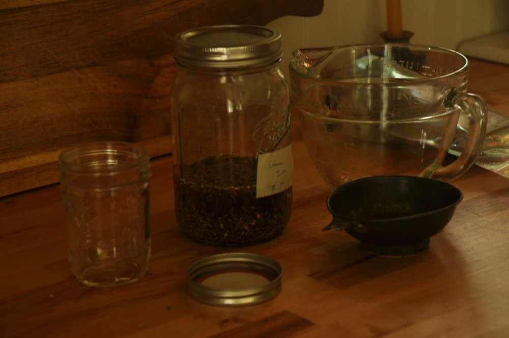 tinctures for winter wellness
