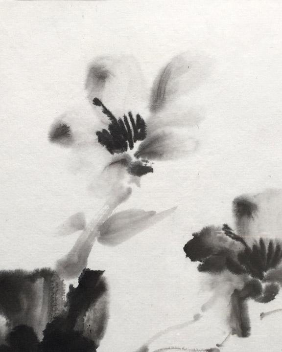Spring-Blossoms-8.11.5-Im-15.20-fr-500.jpg