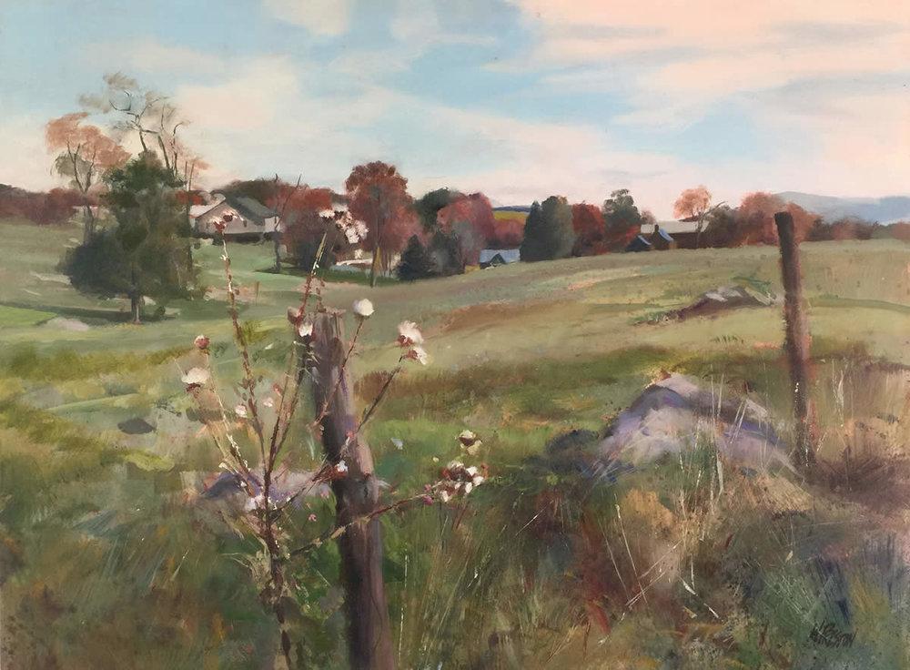 Milkweed - Shenandoah -          -