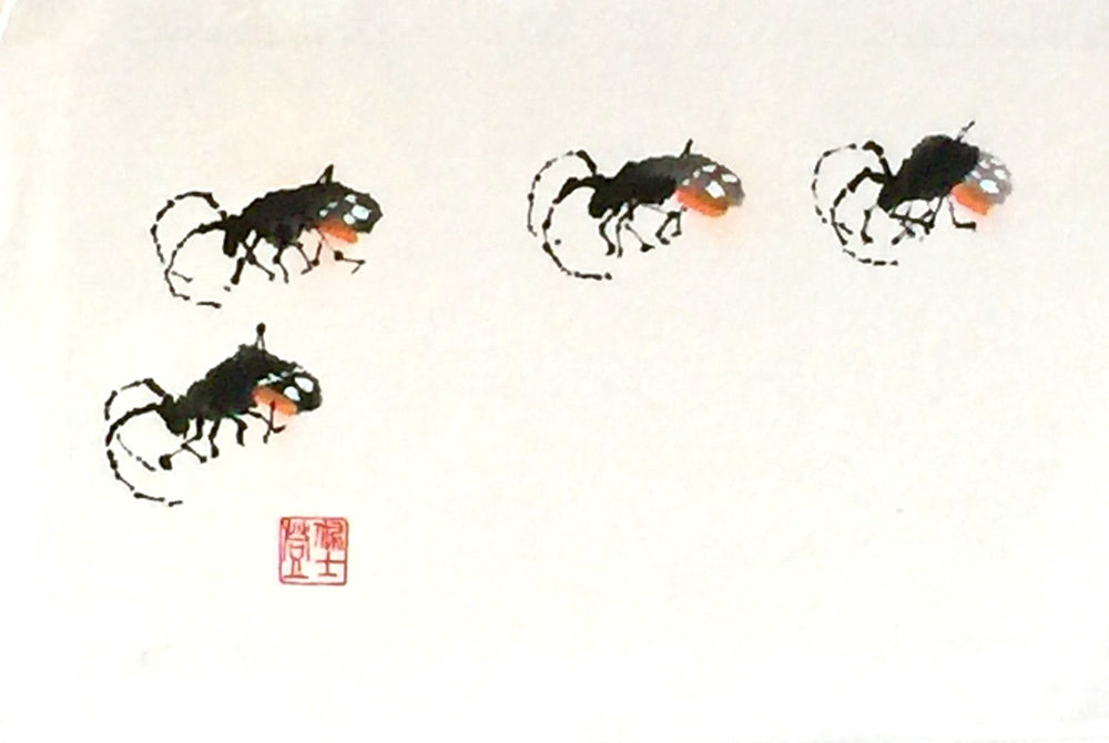 Beetle March -Sumi/CHinese WC 7x13 - $450